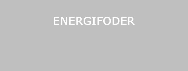 Energifoder